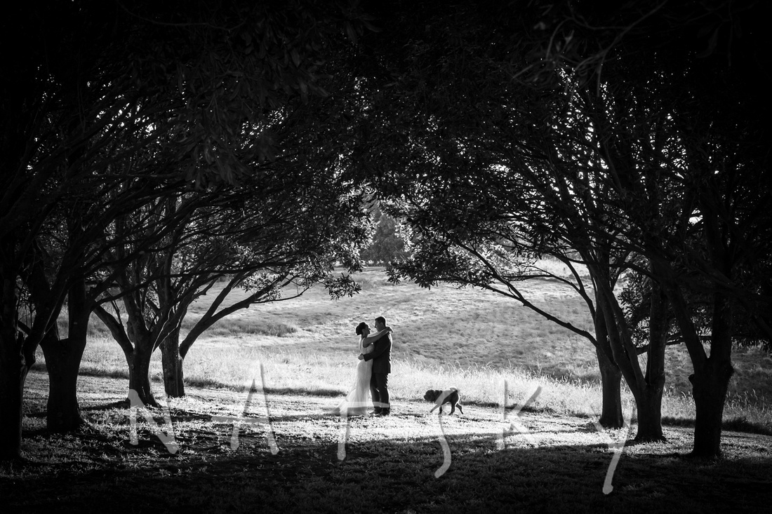 north coast wedding photographer 042