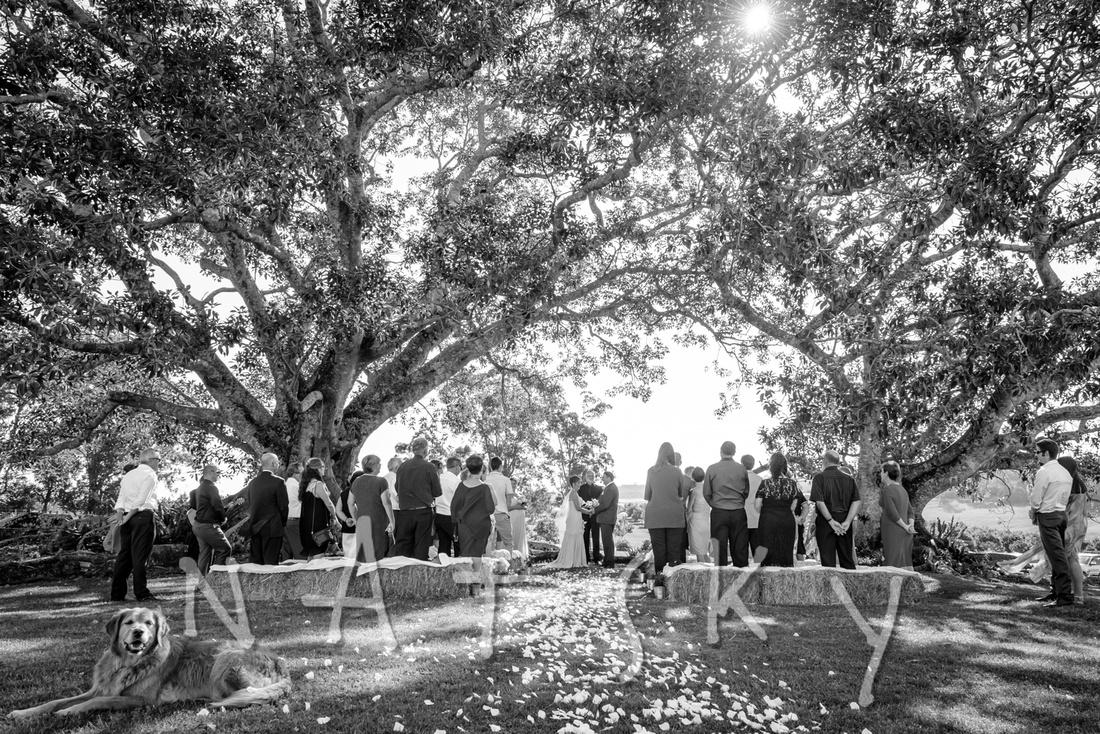 NORTH COAST WEDDING